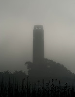 Coit Tower in fog